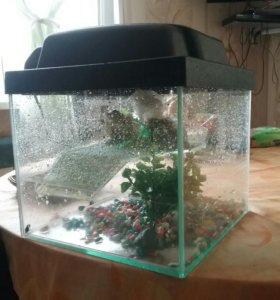Аквариум для рыбок и черепашек.В хорошем срстоянии