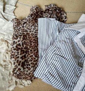 Блузки, рубашка