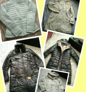 Куртка и пальто zolla, colambia, toto