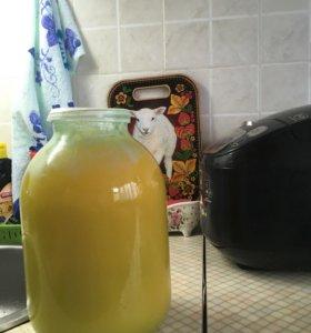 Мёд (В обмен на замроженную смородину, крыжовник)