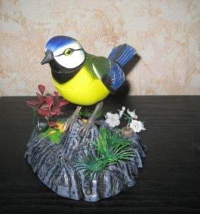 Птица певчая. Зеленоград