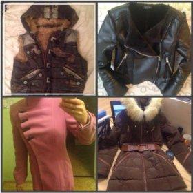 Пальто, жилет, куртка, пуховик