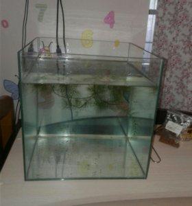 Аквариум рыбки