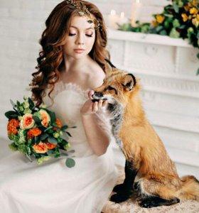 Милые фото с лисёнком