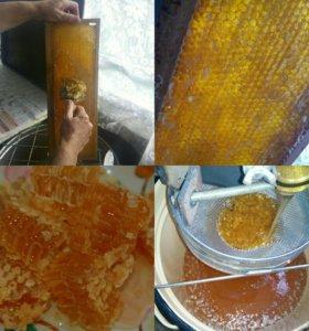 мёд лето 2017