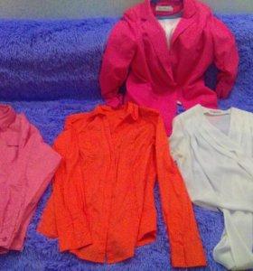 Рубашки и блузы женские и др