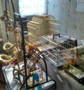 Клетки для птиц разные