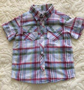 Рубашка в клетку с коротким рукавом Bearfoot р. 98