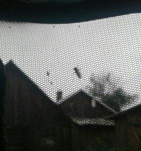Ручной комар.