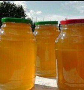Мёд, возможен торг