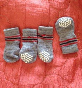 Носки для кошки или собаки