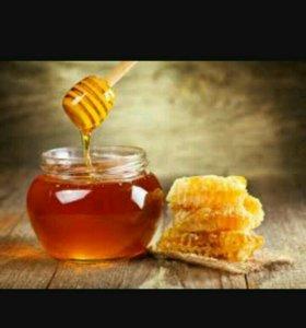 Мед свежий