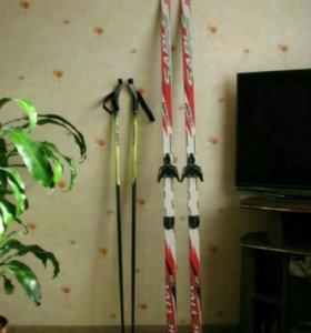 Лыжи (185 см), палки (125см).