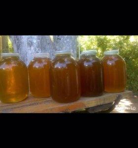 Мёд этого года