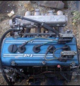 Двигатель газели ЗМЗ номер двигателя 406241008118
