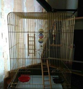 Продам огромную клетку для птиц