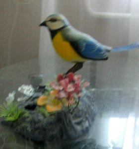 Птичка чирикающая