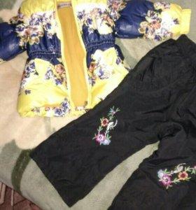 штаны и курточка