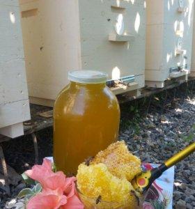 Мед домашний, натуральный