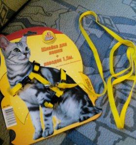 Поводок для кошки или маленькой собачки