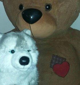 Медведь и волчонок
