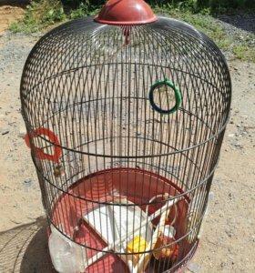 Продам клетку для попугаев