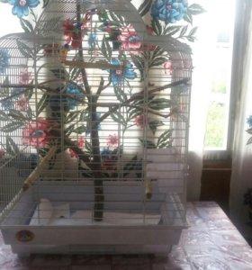 Клетка для попугаев(небольшой торг)
