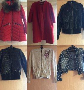 Куртки, пуховики,пальто, джинсовая куртка