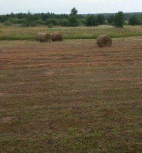 Свежее полевое сено