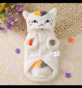 Одежда для котёнка