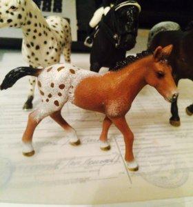 Лошадка жеребенок