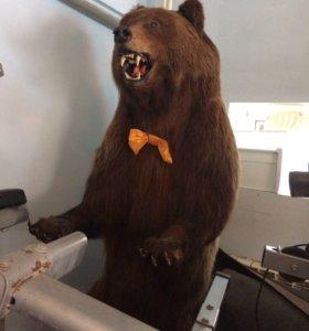 Чучело медведя,интерьер