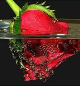Розовая вода