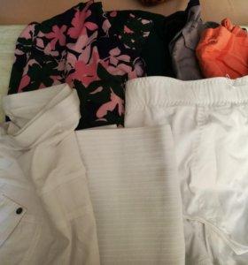 Одежда для беременных(пакетом или по отдельности)