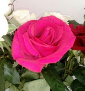 В магазин Цветы требуется пролавец.срочно.