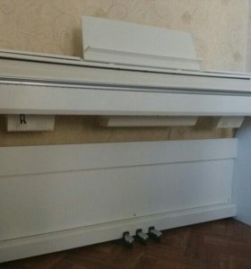 Цифровое пианино Casio Privia PX-850