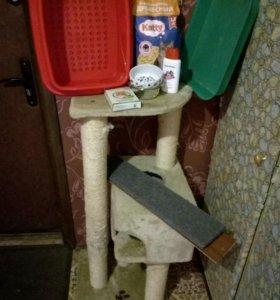 Когтеточка-домик и другое