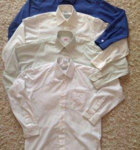 Рубашки для школы, р.134-140 (размер 31)