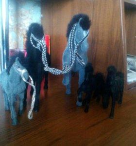 Семейка лошадей