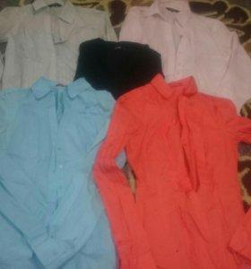 Рубашки, блузки Ostin