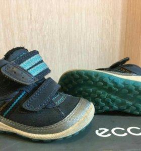 Ботинки Ecco goretex