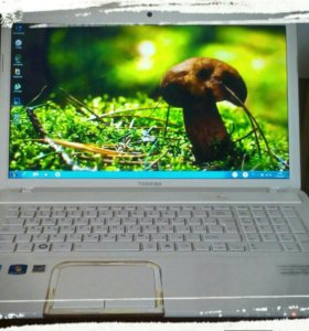 Ноутбук Toshiba Satellite L870-C9W