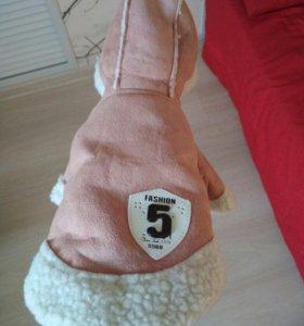 куртка для собак маленьких пород