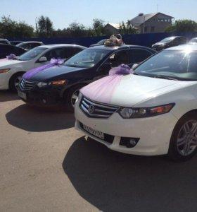 Автомобиль/кортеж на свадьбу Honda Accord