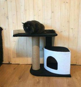 Домик когтеточка для кошки Эко - 003