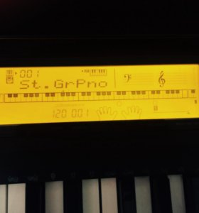 Электронное пианино CASIO 220-CDR