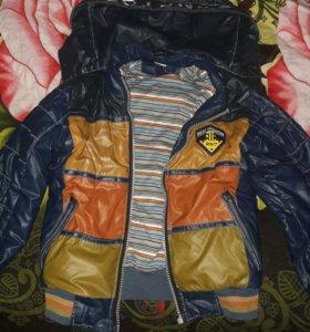 Куртка (димесизон)