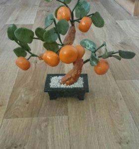 Мандариновое дерево. Торг