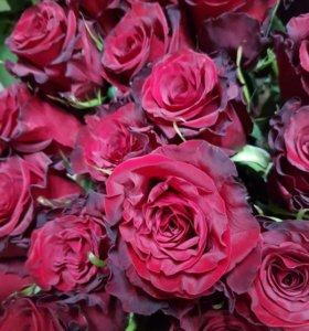 Розы Свежие Цветы Букеты