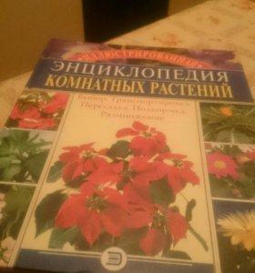 Книга о комнатгых ростениях